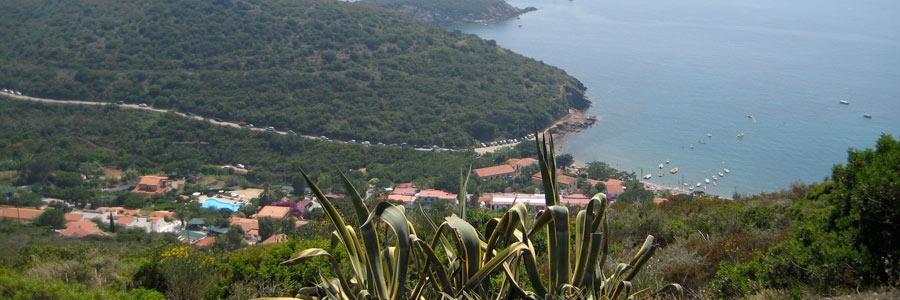 panorami isola d'elba
